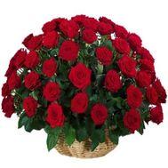 Букет роз - АЛЬТ - flowers and bouquets on flowers.ck.ua